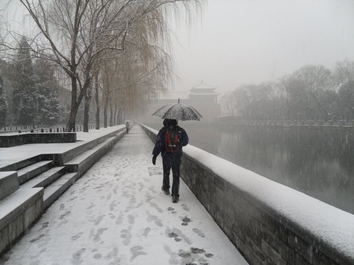_3-taro-is-the-snowy-forbidden-city.jpg